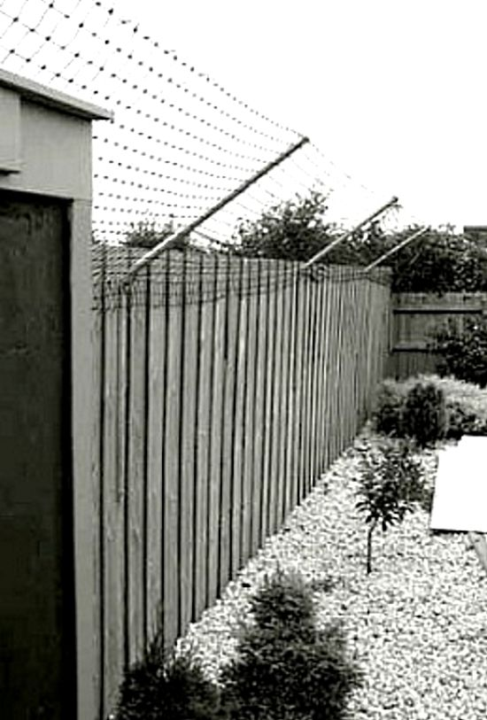 The angled flexible netting is the best cat-proof fence, but it has to be properly designed and more than 1.8 m high so that cats cannot leap over the entire fence. This design is widely used to stop wildlife such as possums and koalas from straying