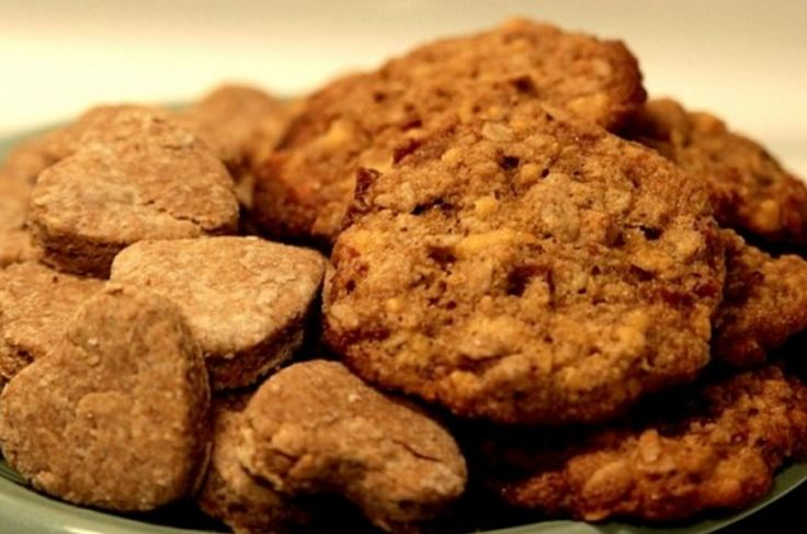 Homemade dog food is very nutritious and has low levels of fat and sugar that can harm your dog